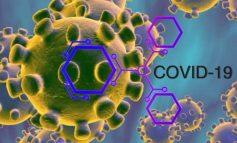KORONAVIRUSI/ Konfirmohen 30 raste të reja me COVID-19 në Maqedoninë e Veriut, dy pacientë dërgohen me urgjencë në spital
