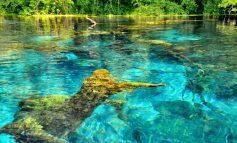 KOMENTET/ Turisti serb mahnitet nga Syri i Kaltër: Ky vend është i mrekullueshëm. Ngyra blu...