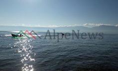 """""""KORANI ENDEMIK I POGRADECIT""""/ Peshku unikal i liqenit të Ohrit dhe rëndësia e tij (FOTOT)"""