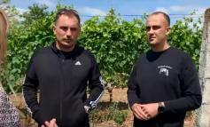 FITUAN MAKINË TË RE BUJQËSORE/ Rama poston VIDEON e dy të rinjve prodhues të fidanishteve të hardhisë së rrushit