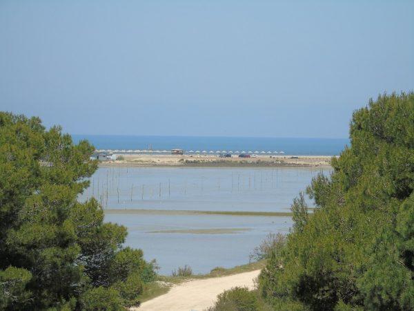 TRAGJIKE/ Gjendet i mbytur një 37-vjeçar në bregdetin e Durrësit, policia jep detaje