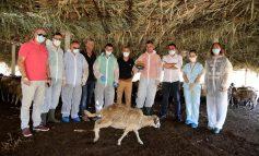 JEP LAJMIN E MIRË/ Rama: 400 milionë lekë shtesë nga buxheti i shtetit për fermerët që aplikuan në e-Albania