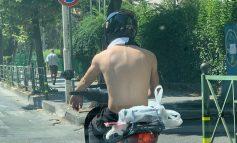 """Si t'ia bësh kur në Tiranë është vapë dhe duhet të mbarosh një """"punë"""" me...motorr"""