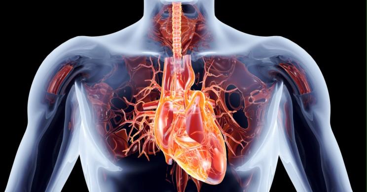 STUDIMI/ Covid-19 sulmon edhe zemrën