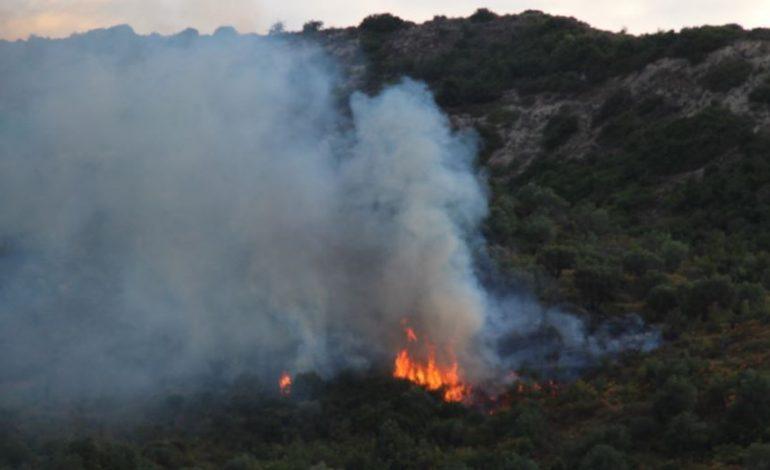"""E RËNDË LUSHNJE/ Zjarri masiv djeg ullishtet e fshatit, zjarrfikësit në """"luftë"""" me flakët"""