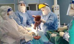 RASTI I PARË NË SHQIPËRI/ Nëna e infektuar me Covid19 sjell në jetë foshnjën e saj, të porsalindurit i bëhen analizat