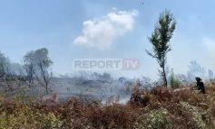E RËNDË/ Zjarr i qëllimshëm në Kodrën e Hakve në Fushë-Krujë, digjen 5 hektarë ullishte e vreshta rrushi (VIDEO)