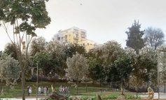 PAMJET/ Si do të transformohet Kopshti Zoologjik i Tiranës. Ishuj, mur kundër zhurmave e kënde lojërash