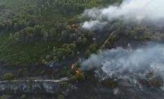 PAMJE ME DRON/ Pylli i Semanit po shkrumbohet, në ndihmë të zjarrfikëses edhe ushtria (VIDEO)