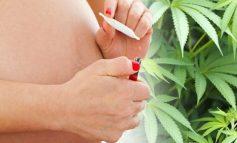 STUDIMI/ Tymosja e marijuanës gjatë shtatzanisë mund të shkaktojë autizëm te fëmijët