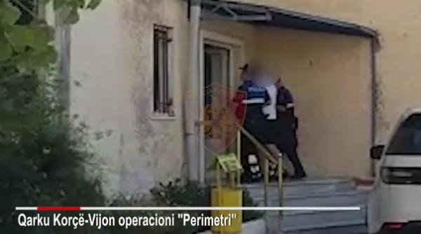 PO TRANSPORTONIN 14 EMIGRANTË TË PALIGJSHËM/ Arrestohen disa të rinj në Korçë, njëri prej tyre 'çmend' policët