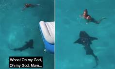 E TMERRSHME/ Gruaja hidhet nga varka dhe e gjen veten duke notuar me peshkaqenin, djali bërtet (VIDEO)