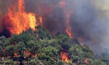 ZJARR NË NJË PEMTORE NË BURREL/ Flakët izolohen nga zjarrëfikësit dhe fiken plotësisht. Humb jetën një 80-vjeçar (EMRI)