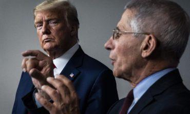 """E SHKARKOI DHE E QUAJTI """"KATASTROFË""""/ Fauci i përgjigjet Trump me një frazë nga filmi """"Kumbari"""""""