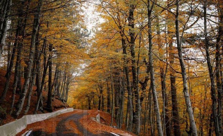 """""""PERLË"""" NATYRORE/ Parku Kombëtar i Qafë-Shtamës një mrekulli që duhet vizituar (PAMJET)"""