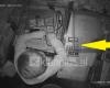 DALIN PAMJET/ 10 vjeçari shqiptar duke vjedhur në dyqan…qetësisht