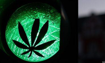 """""""KY PROÇES DUHET TË JETË GJITHËPËRFSHIRËS""""/ Maqedonia e Veriut synon dekriminalizimin dhe legalizimin e marihuanës"""