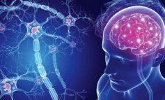 SKLEROZA E DYFISHTË/ Zbuloni si ndikon vitamina D te mbrojtja e trurit