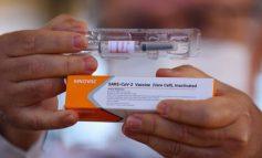 LAJM I MIRË/ Turqia konfirmon efikasitetin e lartë të vaksinës Sinovac: Parandalon vdekjet
