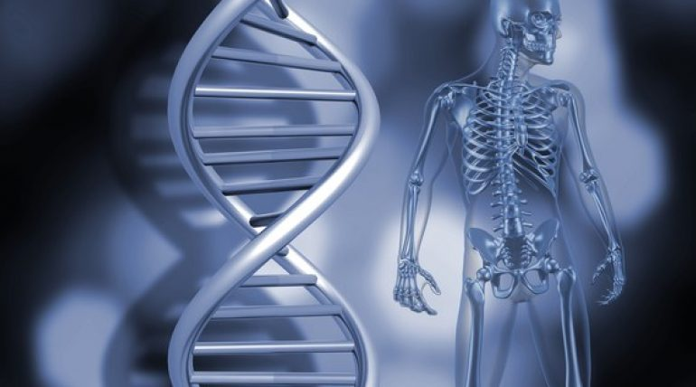 ALGJËRIM PËR 3 DITË/ Zbuloni si e rigjeneron trupin dhe qelizat