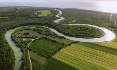 """""""PANORAMË...""""/ Rama nis ditën me FOTO nga grykëderdhja e lumit Shkumbin në Bashtovë"""