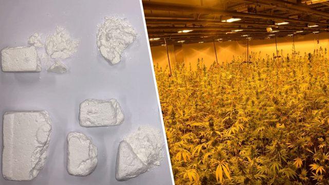 SHKATËRROHET RRJETI I DROGËS NË VJENË/ 24 shqiptarë të arrestuar. Lënda narkotike shitej në lokale