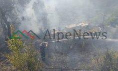 PAMJET EKSKLUZIVE/ Zjarr në lagjen Mece të Krujës, digjen shkurre. Ja SHKAKU