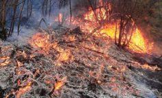 E RËNDË NË GJIROKASTËR/ Zjarr masiv në afërsi të fshatit Prongji, zjarrfikësit prej orësh në luftë me flakët