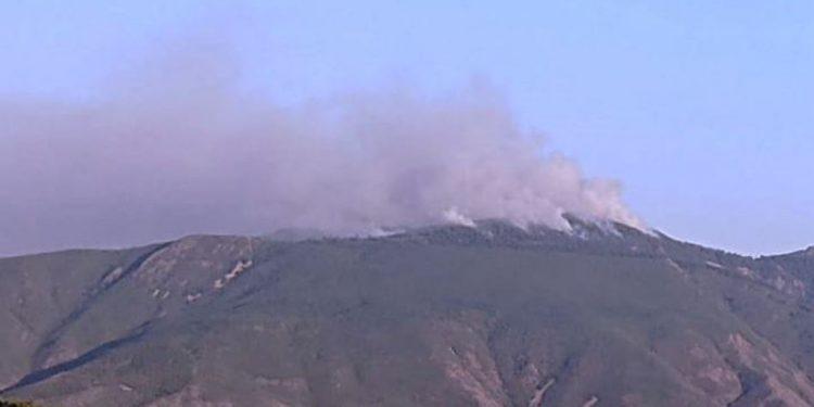 PAMJET E FUNDIT/ Përfshihet nga flakët maja e Malit të Bukanikut në Elbasan, zjarri po përhapet me shpejtësi