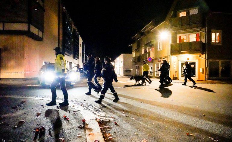 SHIGJETA E NJERËZ TË SHTRIRË/ Dalin të tjera PAMJE nga sulmi në Norvegji, konfirmohen 4 viktima