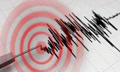 DRIDHET TOKA/ Lëkundje të lehta tërmeti në Shqipëri, ja në cilët qytete janë ndjerë